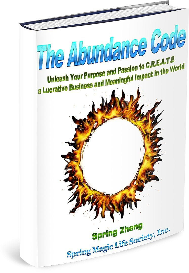 """FREE eBook: """"The Abundance Code ~ Unleash Your Purpose and Passion to C.R.E.A.T.E a Lucrative Business and Meaningful Impact in the World!"""""""